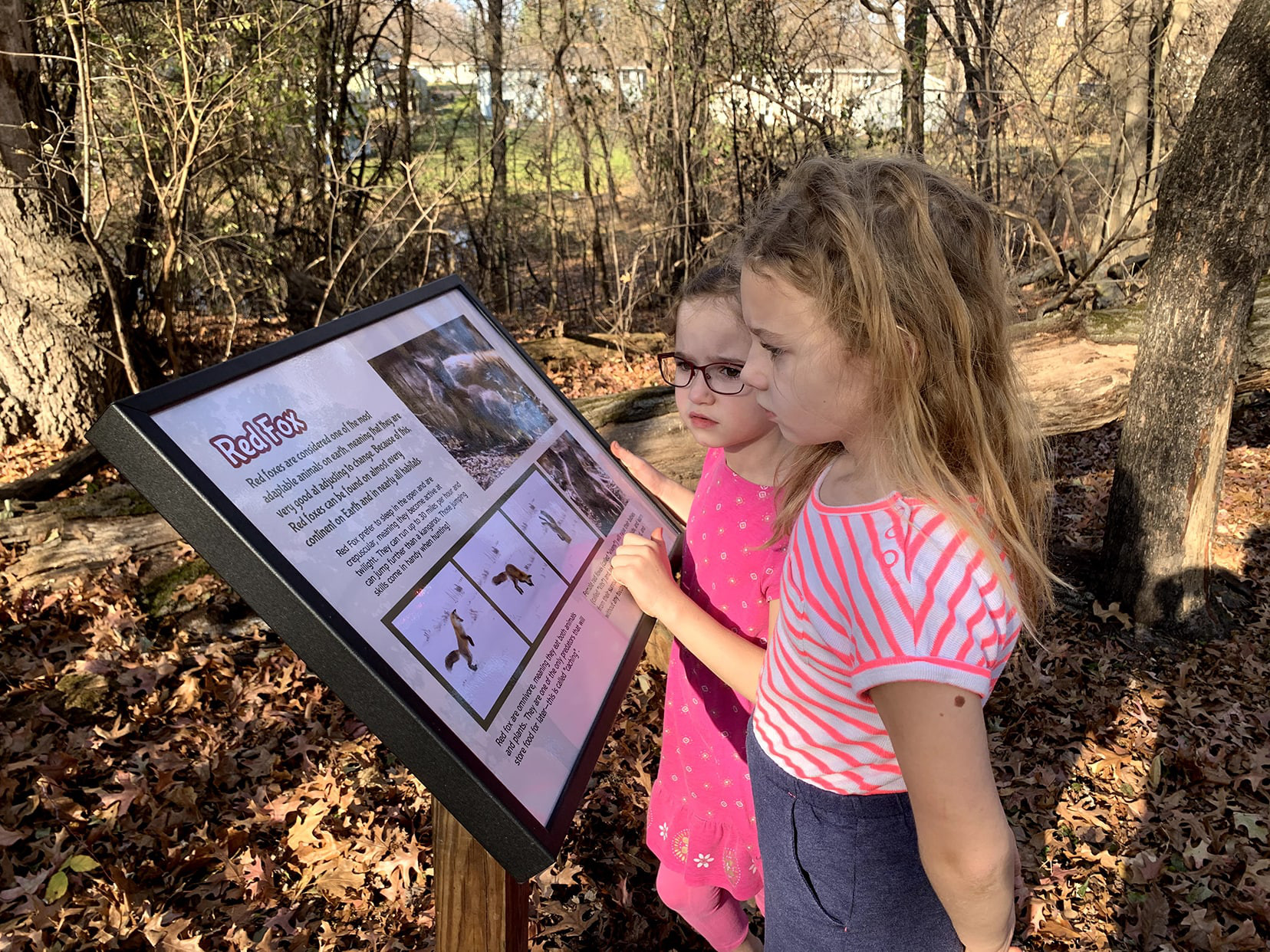 Two young girls reading an interpretive nature sign in the woods.