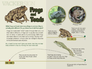 Frogs and Toads Education Sign