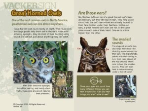 Great Horned Owl Outdoor Education Sign