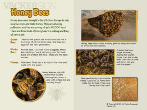 Honey Bees Outdoor Education Sign