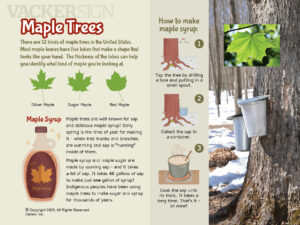 Maple Trees Outdoor Educational Sign