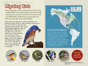 Migratory Birds Outdoor Nature Sign