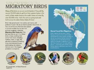 Semi-custom Migratory Birds Interpretive Sign
