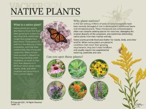 Semi-custom Native Plants Interpretive Sign