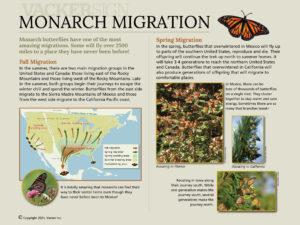 Standard Monarch Migration Interpretive Sign